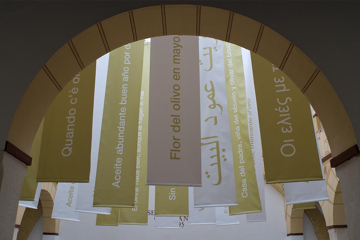 Exposición Tierras del Olivo. La cultura del olivo en la Casa de la Tercia, Baena.
