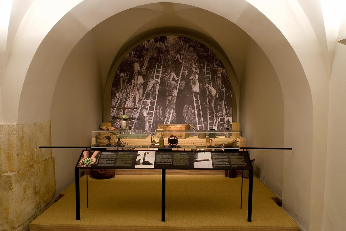 Exhibition Lands of Olive Groves. The culture of the olive tree. Casa de la Tercia, Baena, Córdoba.