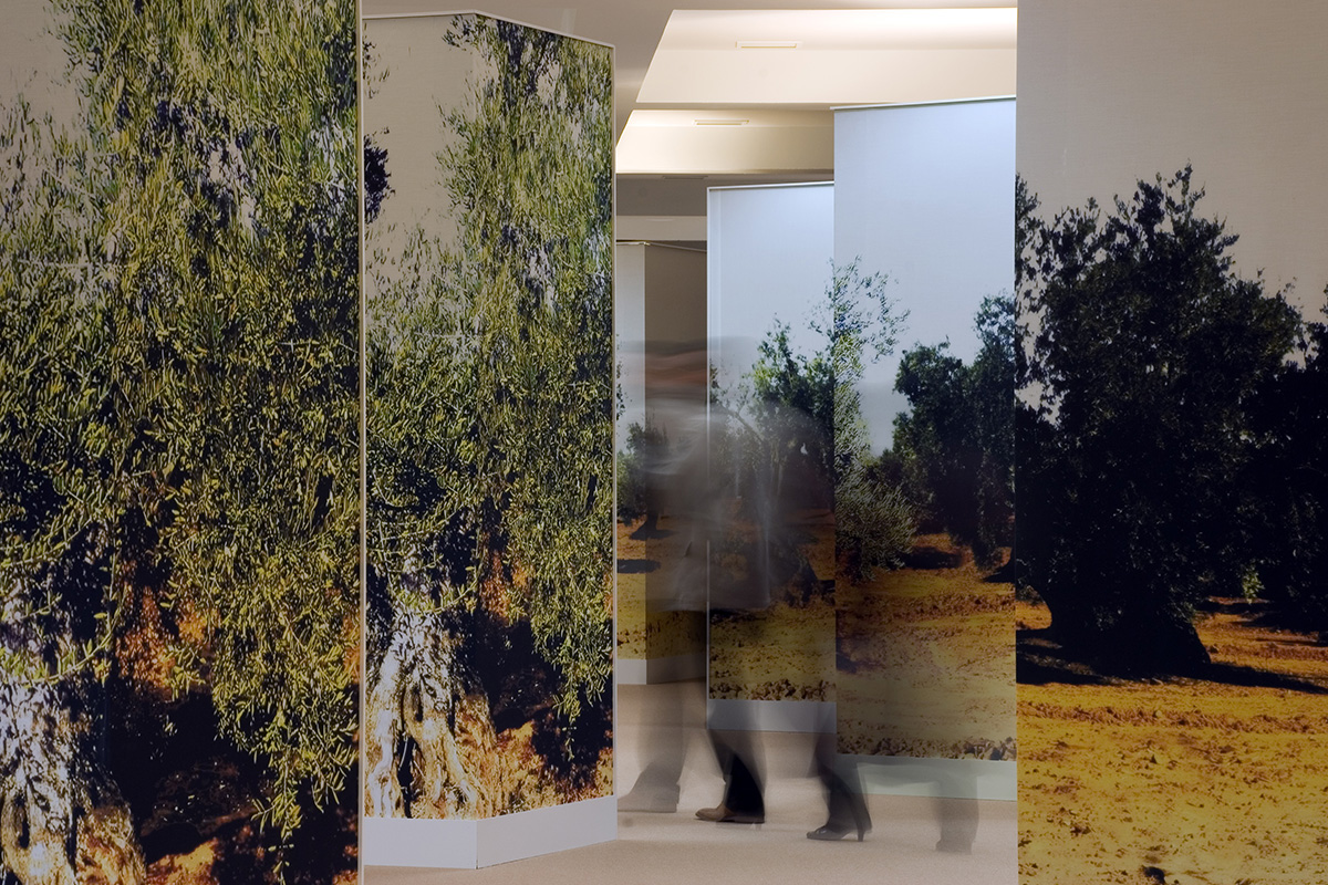Exhibition space in the venues of Jaén. Exhibition Lands of Olive Groves. The olive tree... present and future.