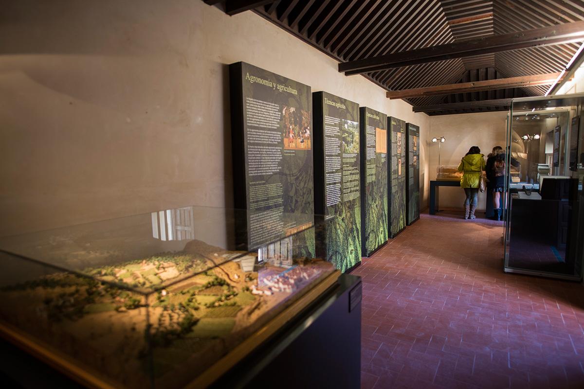 Una de las salas de la Exposición La Ciencia en al-Andalus Palacio de Dar al-Horra. Fotografía JM. Grimaldi.