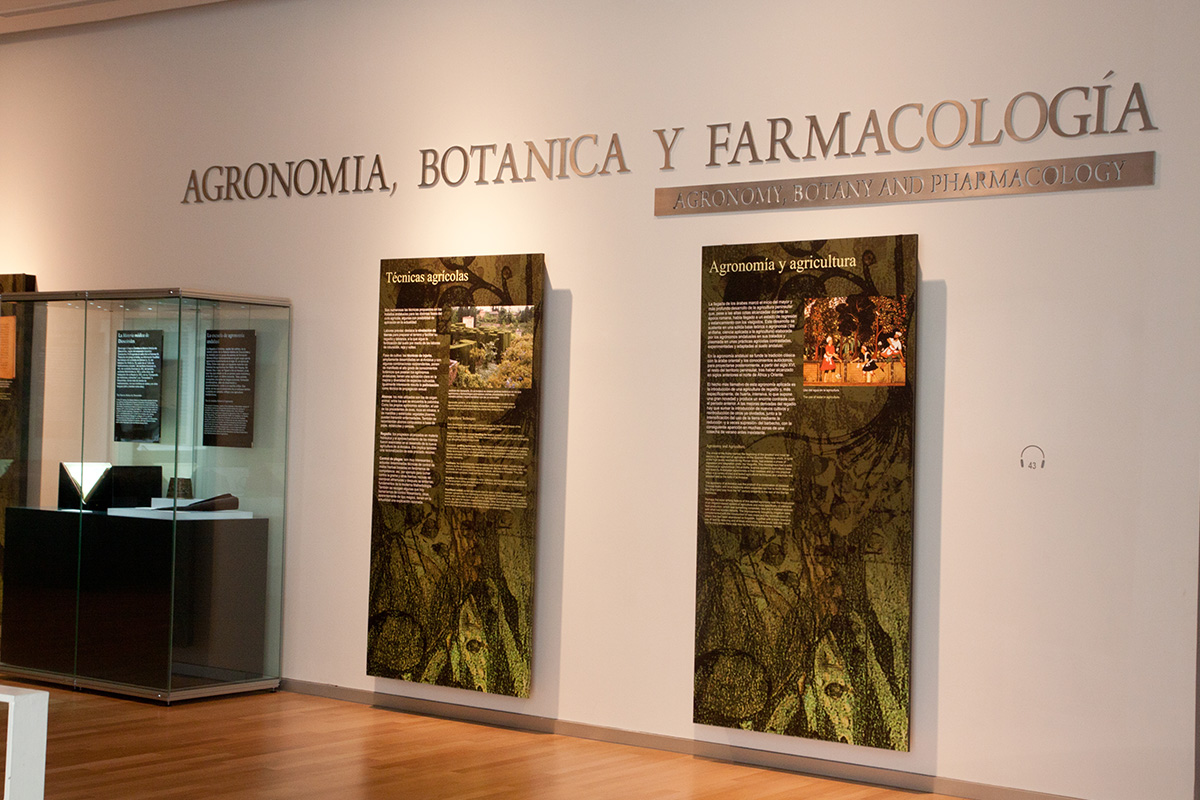 Partial view of the space dedicated to Agronomy, Botanics and Pharmacology.