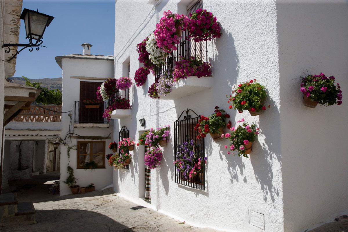 Rincón de Bubión. Granada.