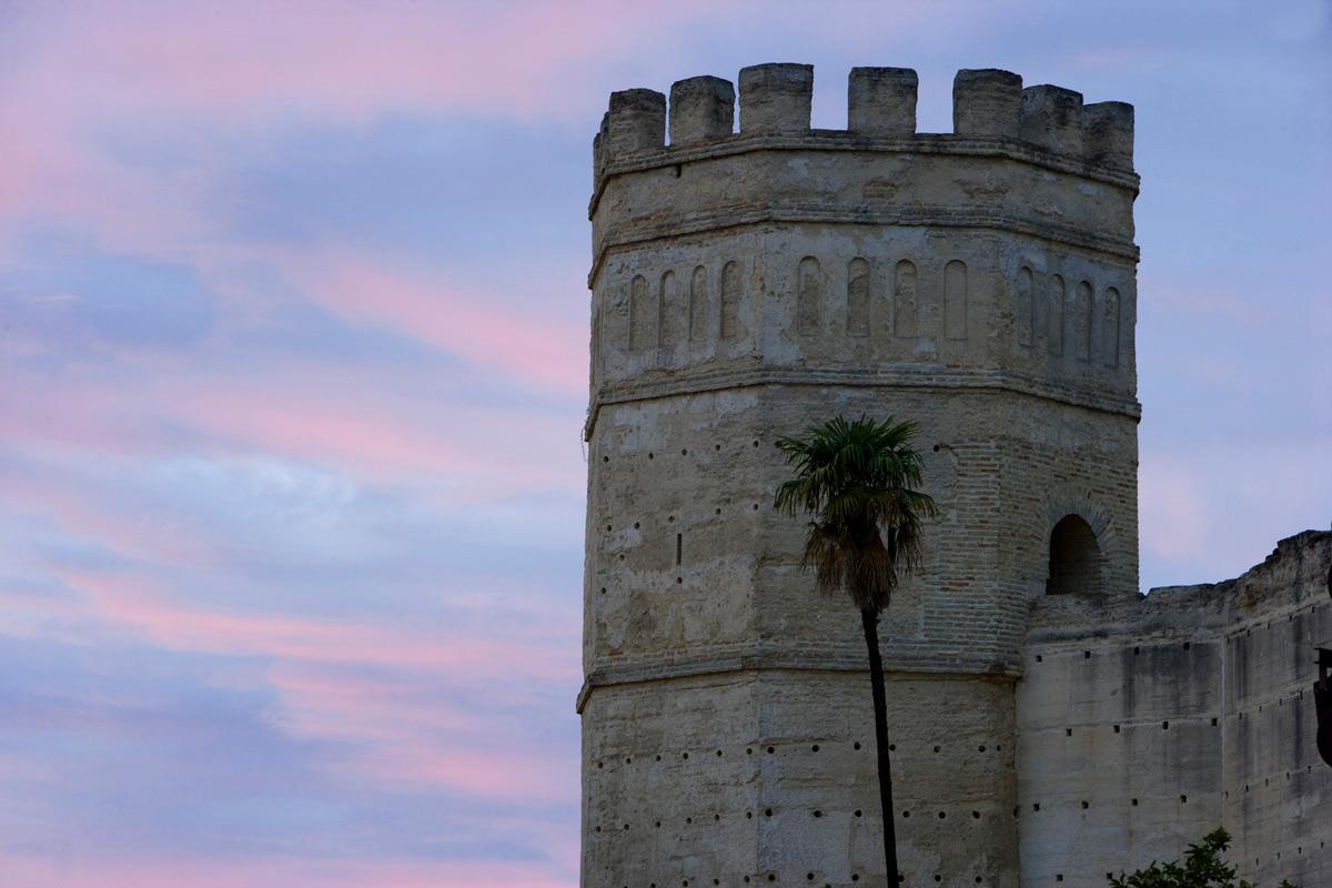 Vista de la Torre octogonal del Alcázar de Jerez de la Frontera. Cádiz.