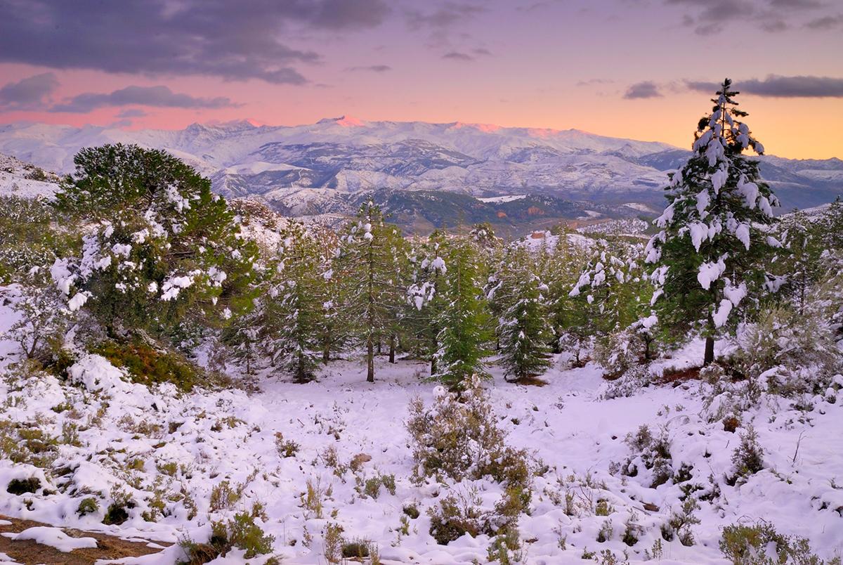 Sierra de Huétor.