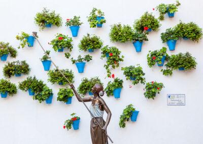 Patios cordobeses. ©Plataforma de Material Audiovisual de Turismo y Deporte de Andalucía.